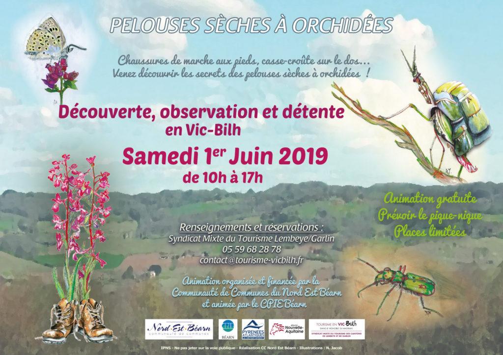 découvertes orchidées en juin