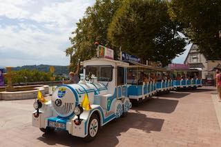 Petit train de Pau