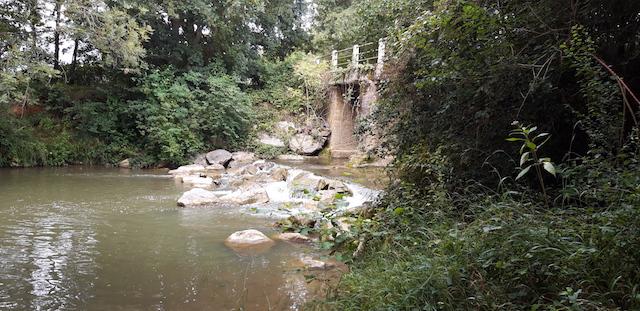 rivière le Lèes à 50m